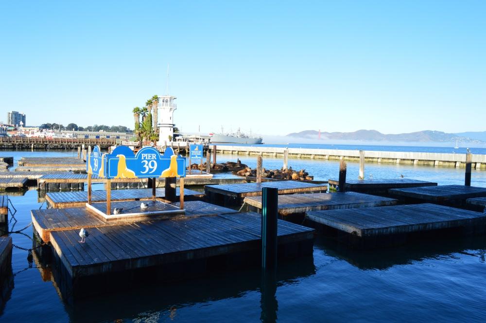K Dock at Pier 39